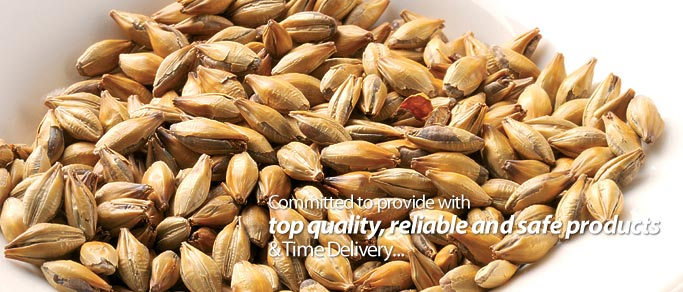 Wheat Malt Products